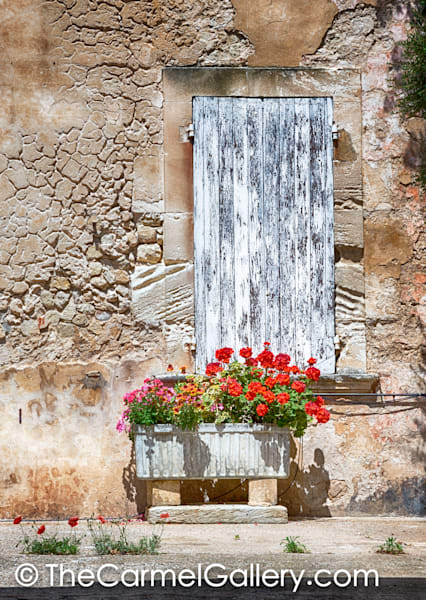 Flowered Wall Provence