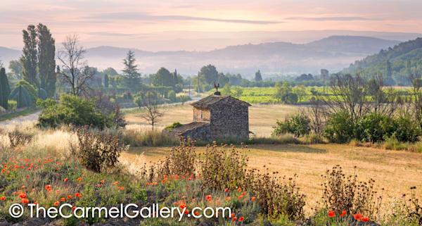 Summer Provence Hills