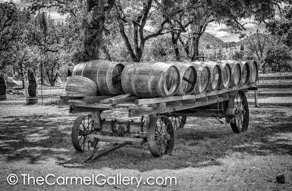 Wine Delivery BW