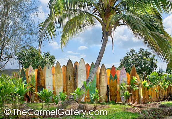 Surfboard Heaven