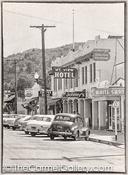 Mount View Hotel 1950's