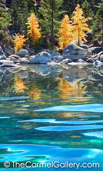 Autumn aspen reflection in Lake Tahoe art prints