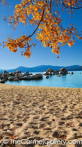 Tahoe Autumn