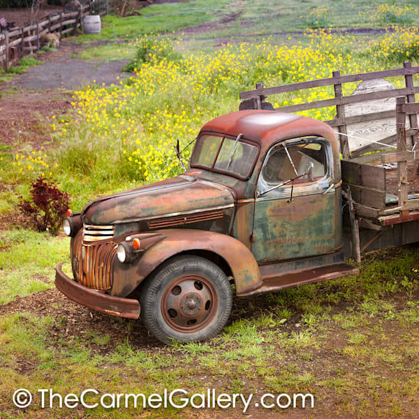 Rusted Truck and Mustard