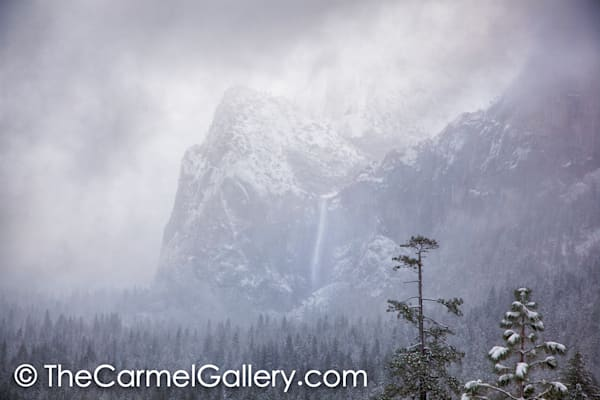 Snow Squall Bridalveil