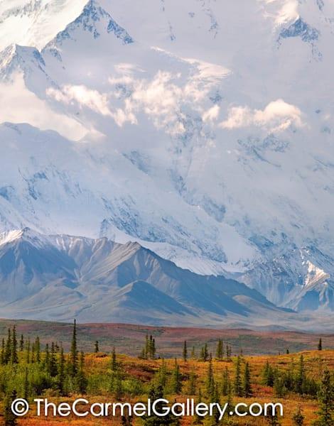 The North Face, Denali