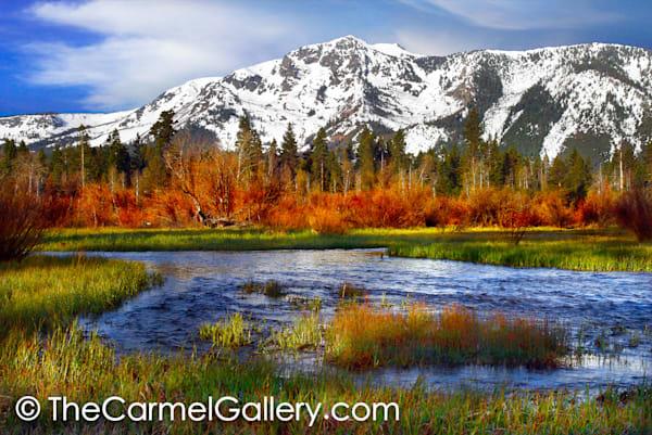 Taylor Creek and Mt Tallac