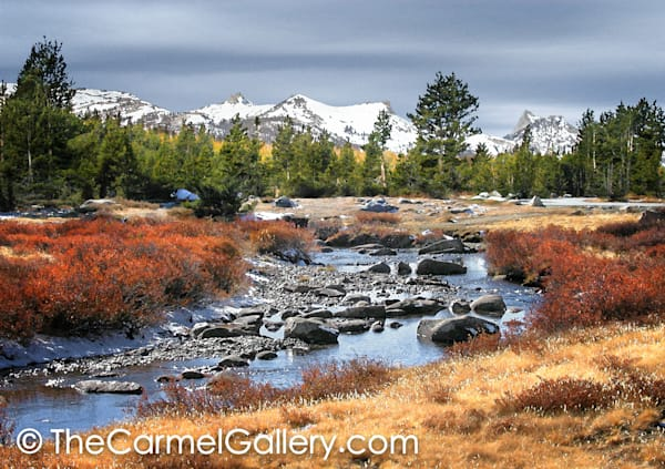 Tuolumne in Autumn