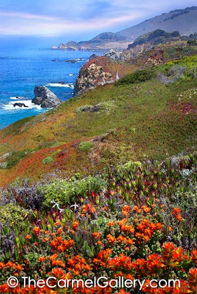 Big Sur Coast in Spring