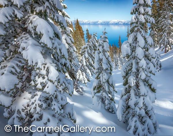 Snowy Calm Tahoe