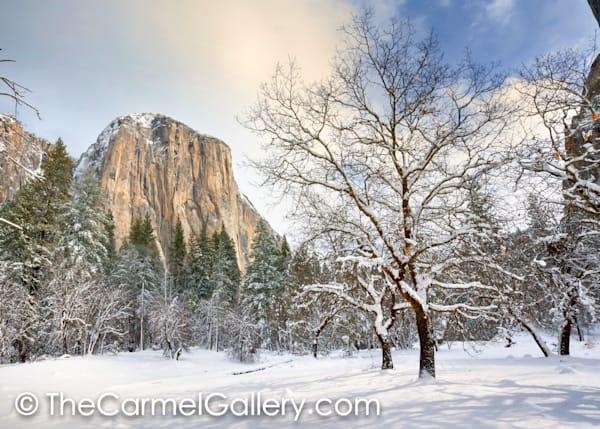 El Cap Meadow in Winter