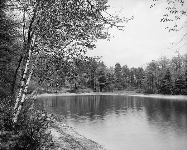 Thoreau's Cove On Lake Walden, MA