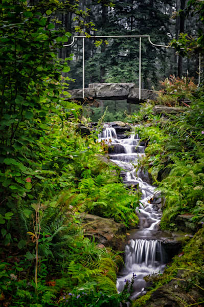 Mt. Cuba Stream Fine Art Photograph | JustBob Images
