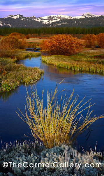 Spring Morning Martis Valley
