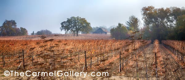 Winter Morning Slusser Barn Art | The Carmel Gallery
