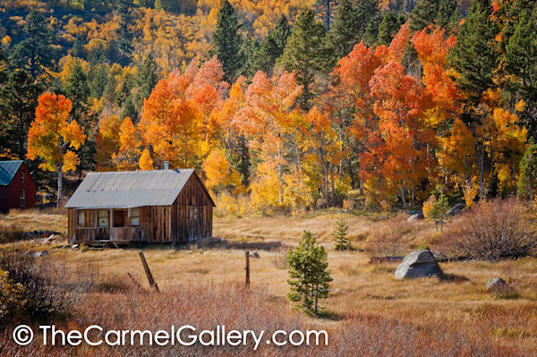 Hope Cabin Autumn