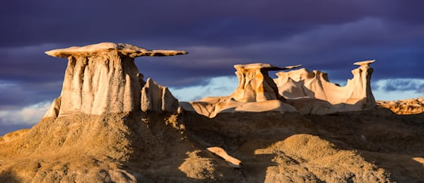 Gold Wings Photography Art | Jon Blake Photography