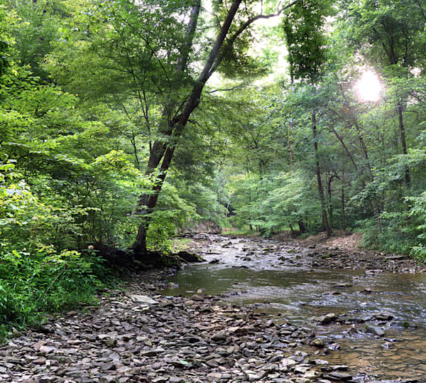 McCormick's Creek State Park : gallery046