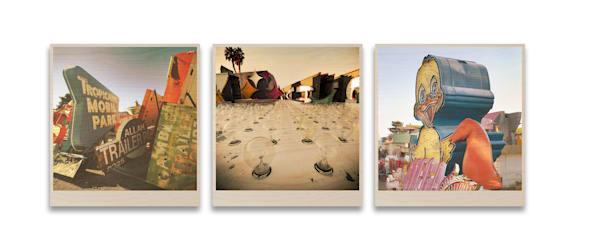 3 Piece 9x9.5 Birch Prints - Instagram Size!