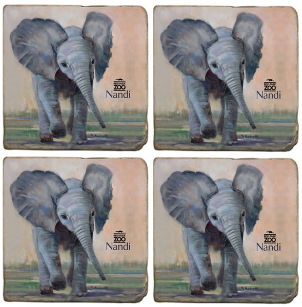 Little Nandi Reid Park Zoo Coaster Set