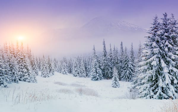 Winterscape - DPC_74919091