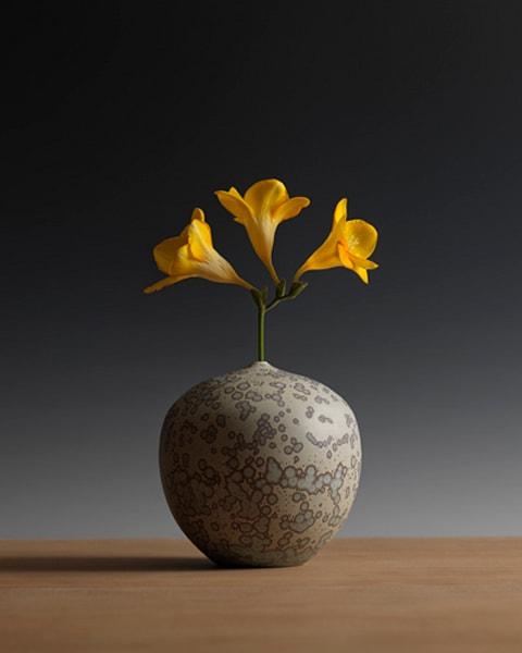 Three Freesia Blossoms, GEOAGR117703
