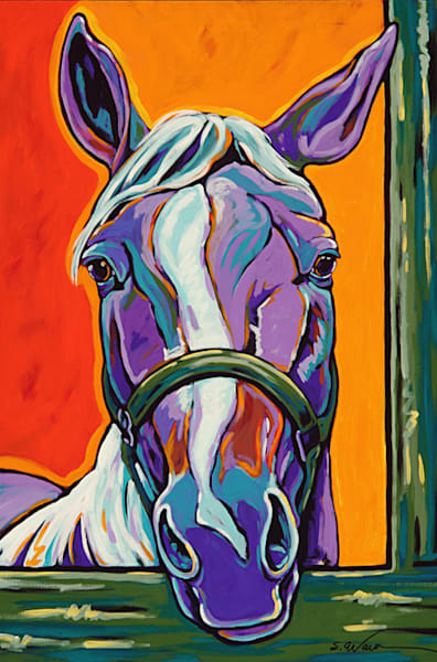 What A Face | Sally C. Evans Fine Art