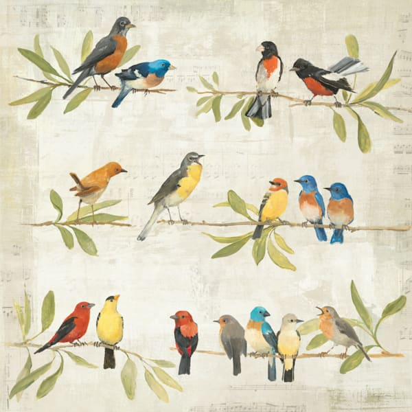 Adoration of the Magpie Music