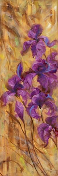 Bearded Iris VII, LIBO131332