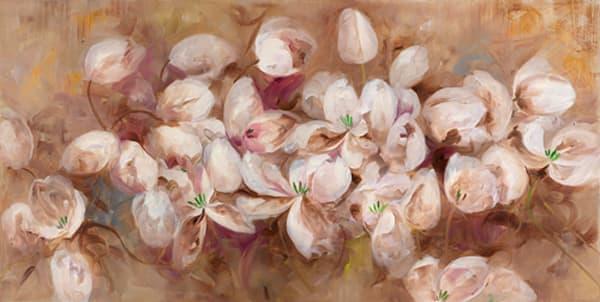 Opening Tulips, LIBO131334