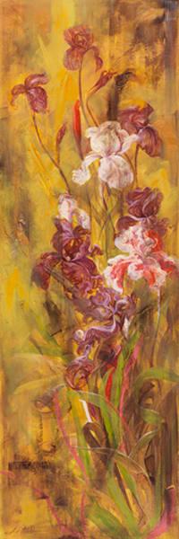 Bearded Iris III, LIBO131328