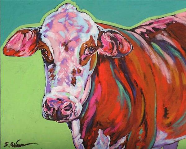 Daisy | Sally C. Evans Fine Art