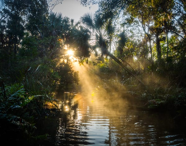 Chassahowitzka River, Florida, Landscape, Photography, Sunrise