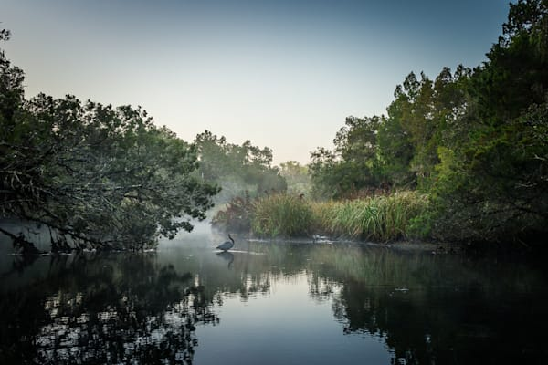 Chassahowitzka River, Florida, Landscape, Photography, Morning
