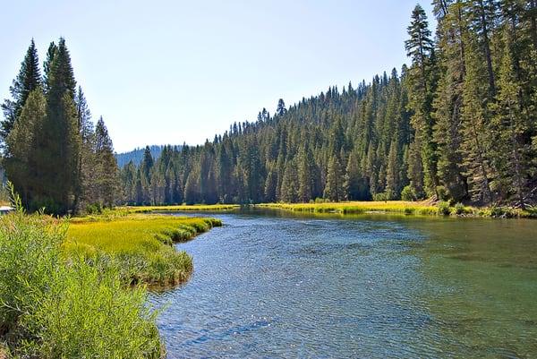 Truckee River Calm
