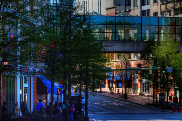 A Fine Art Photograph of a Shady Silver Spring by Michael Pucciarelli
