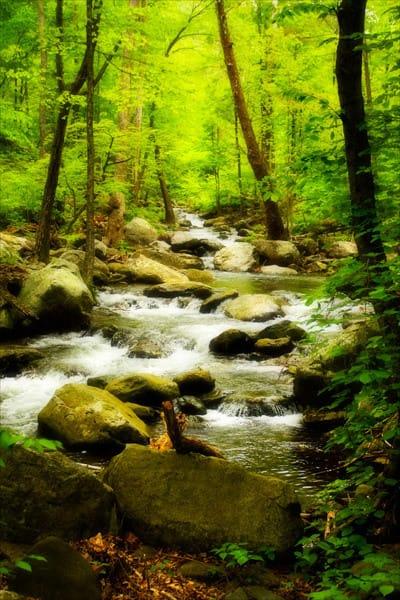 White Oak River I