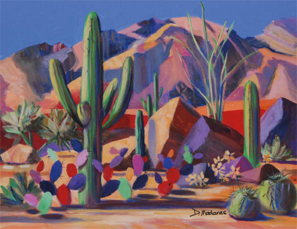 Catalina Magic | Southwest Art Gallery Tucson | Madaras