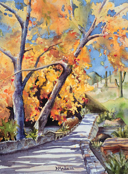 Walk in Sabino | Southwest Art Gallery Tucson | Madaras