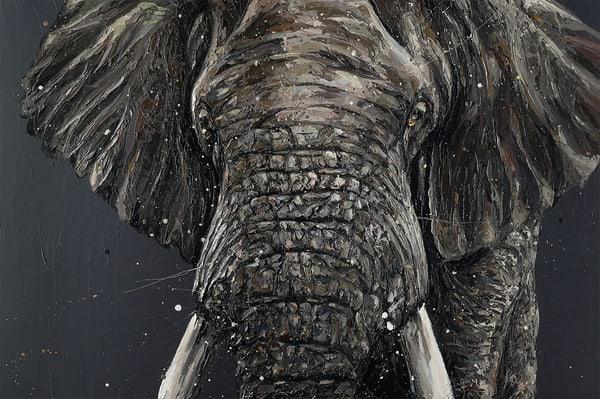 Gino Elephant