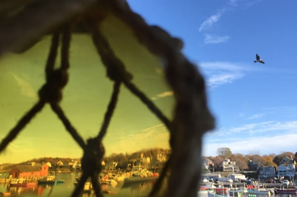 Motif 1, Rockport, Glass Buoy, Gull