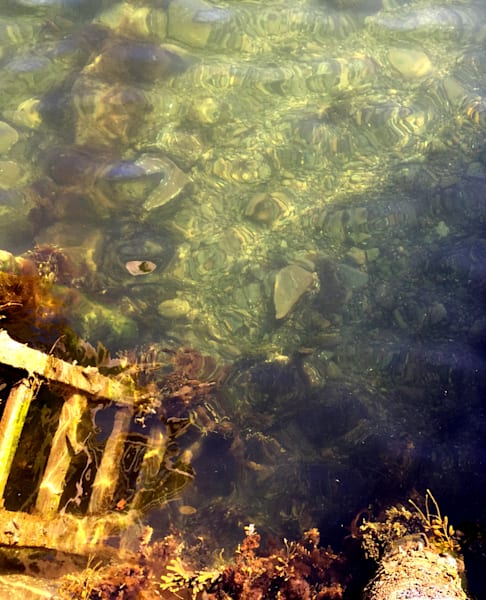 Clear Water, Cape Ann Harbor, Ladder