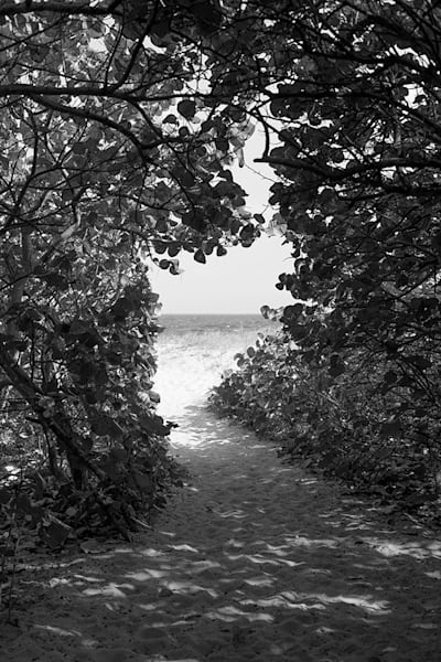 Path to the Sea, DelRay Beach - bw