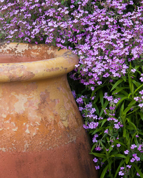 Garden Wall Art: Large Pot and Flowers