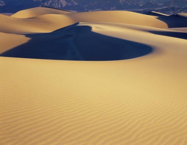 Wind swept sand dunes in Death Valley National Park