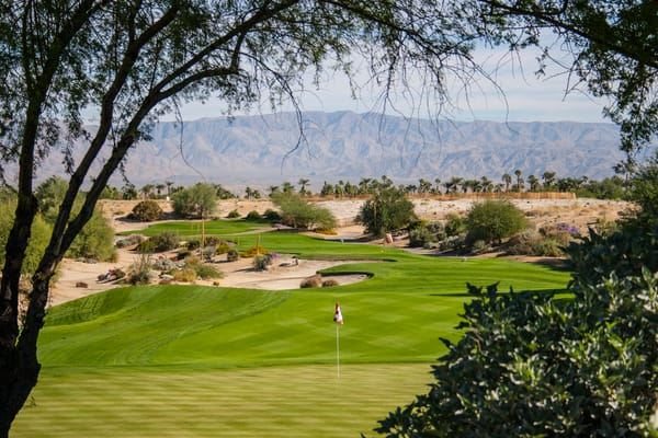 desert willow mt. view