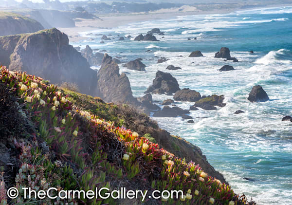 Sonoma Bluffs Art | The Carmel Gallery