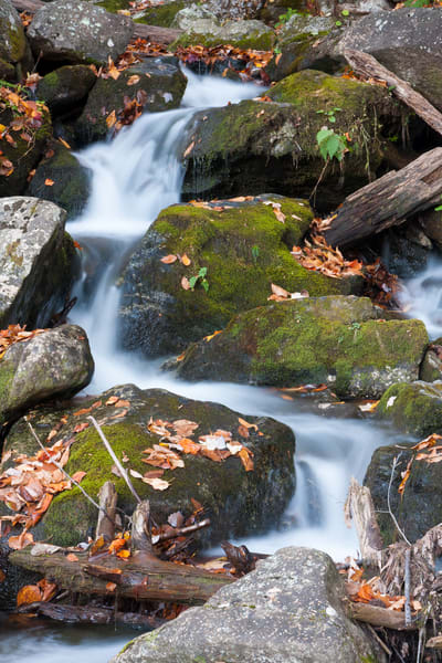 Waterfall Wall Art: Crabtree Cascades