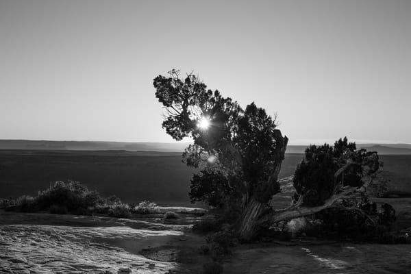 muley-point-sunset