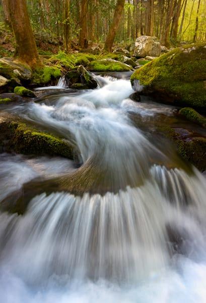 Roaring River Art | Nelson Fine Art Printing